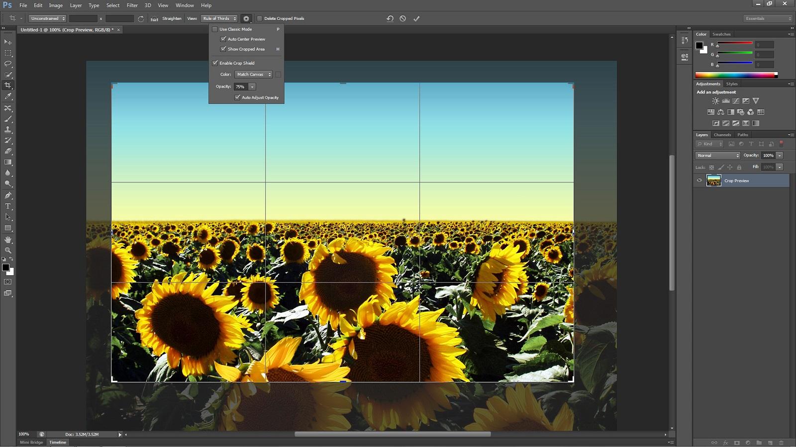 Φωτογραφική Μηχανή DSLR - Megapixels